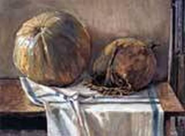 Melon 1905